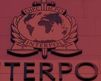 INTERPOL tarafından aranıyordu! Kuşadası'nda yakalandı!