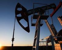 Brent petrol fiyatı kritik sınırın üzerinde