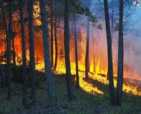 27 orman yangınını PKK üstlendi