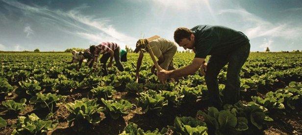 İstihdama tarım damgası