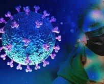 Koronavirüsün bir etkisi daha ortaya çıktı!