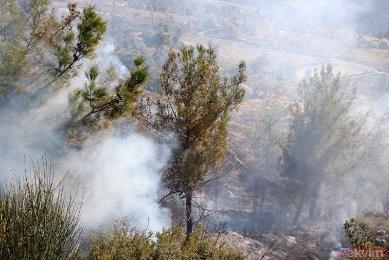 Muğla'da orman yangını! 2 hektar alan zarar gördü