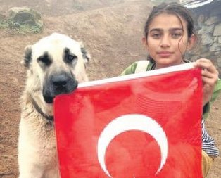 Hamdu Sena Ankara yolunda