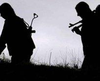 Avrupa Adalet Divanından PKK kararı