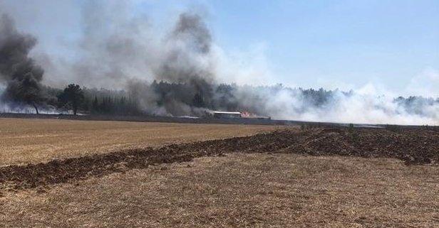 İzmir Bucada orman yangını