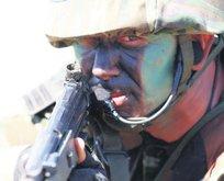 GARA'da 53 hain etkisiz