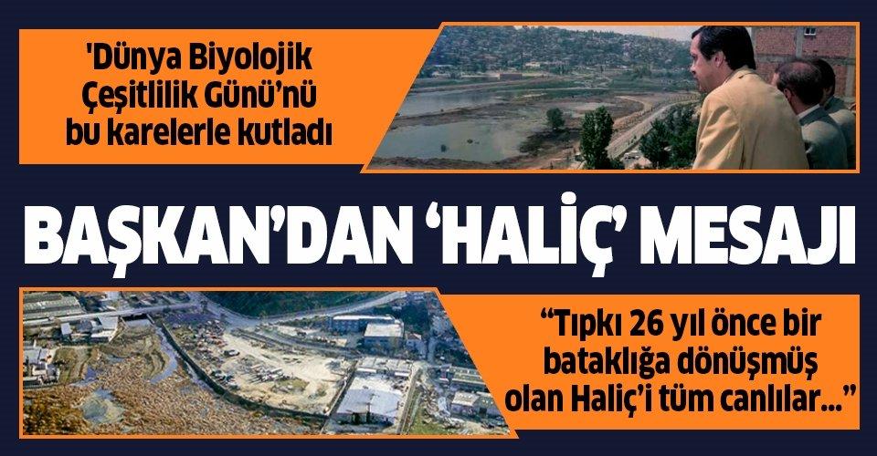 Başkan Erdoğan'dan '22 Mayıs Dünya Biyolojik Çeşitlilik Günü' mesajı! Haliç detayı dikkat çekti