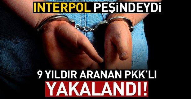 Türkiye istedi İnterpol yakaladı