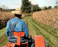 36 bin çiftçiye 434.5 milyon TL