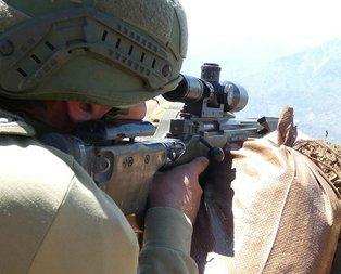 Bakanlık duyurdu! Şırnak'ta PKK'ya ağır darbe