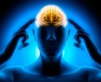 Bu besinler hafızayı güçlendiriyor, beyni geliştiriyor!