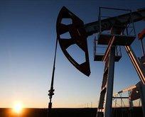 Brent petrol fiyatlarında hareketlilik!