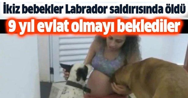 İkiz bebekler Labrador saldırısında öldü
