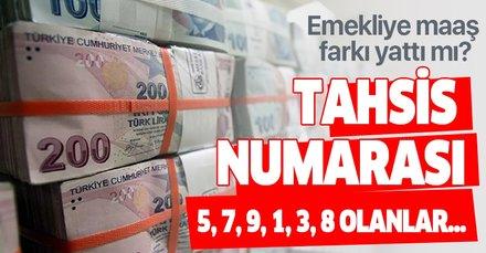 25 Temmuz SSK ve Bağ-Kur emekli maaşı farkı yattı mı? Zam farkı ne kadar tahsis numarası 5,7,9,1,3,8 olanlar...