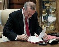 Başkan imzaladı! Devletin iletişimine yeni düzenleme