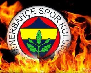 Fenerbahçe'de 3 transfer birden