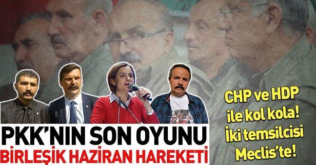 İşte PKK'nın destek verdiği 'Birleşik Haziran Hareketi'