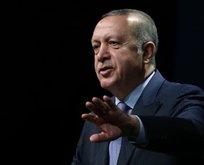Başkan Erdoğan fayton tartışmasına el koydu!