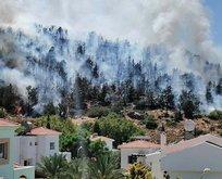 Bir yangın da KKTC'de! Alevler içinde kaldı