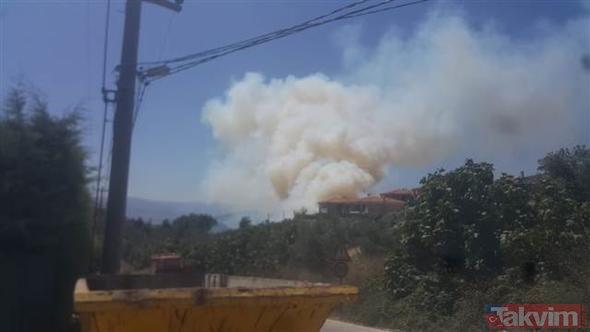 Bursa'da orman yangını! Alevler yerleşim yerlerini tehdit ediyor
