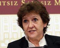 Çölaşan'ın HDP seferberliğine sert tepki