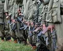 PKK'nın kirli yüzü uluslararası raporlarda