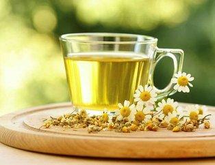 Şifa deposu mucizevi bitkiler! Hangi bitki çayı hangi hastalığa iyi geliyor?