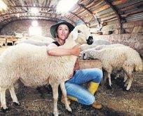 300 koyuna çoban arıyor
