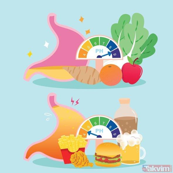 Besinlerin sindirim süreleri ne kadar? Besinlerin sindirim süresini bilmemiz neden önemli?