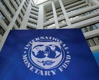 IMF o ülkeleri 1 sene daha bağladı!