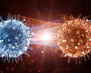 Ölümcül koronavirüs salgınında son 24 saatte neler yaşandı?