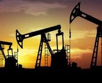 Brent petrol fiyatında hareketlilik