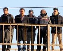 Adana'da dehşete düşüren görüntü!