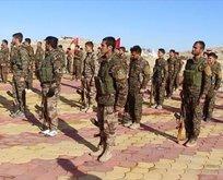 Barzani'den dikkat çeken PKK açıklaması
