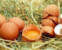 Otizme yumurta kırın