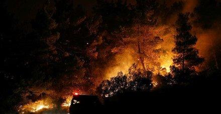 Bakan'dan açıklama: 4 yangınla mücadele ediyoruz