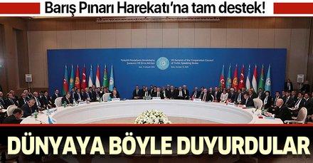 Türk Konseyi'nden Barış Pınarı Harekatı'na tam destek!