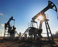 Mardin ve Şırnak'ta da petrol bulundu
