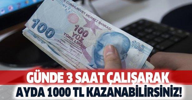 Günde 2-3 saat çalışıp ayda en az 1000 lira kazanın!