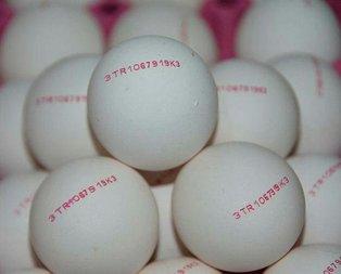 Yumurtanın kabuğunda o yoksa yapmanız gereken!