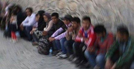 Son dakika: Edirne'de 257 düzensiz göçmen yakalandı