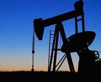 Petroldeki düşüş Suudi Arabistan, Rusya ve ABD'yi vuracak