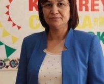 İşte CHPnin Meclise soktuğu vekil Leyla Güven