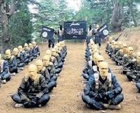 ABD'nin yeni terör ordusu!