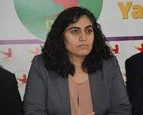 DBP'li Sebahat Tuncel gözaltına alındı!