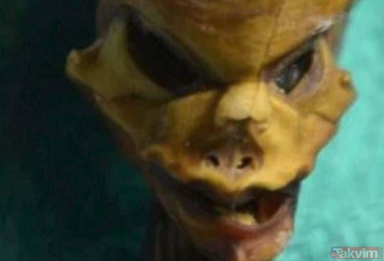 Uzaylı olduğu iddia edilen mumyanın sırrı çözüldü