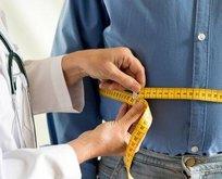 Fındık otu obeziteyi önler