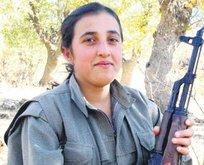 Öldürülen PKK'lı terörist eski HDP'li yönetici çıktı!