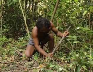 Sadece ağaç kullanarak öyle bir şey yaptı ki! YouTube videosu milyonlar izlendi