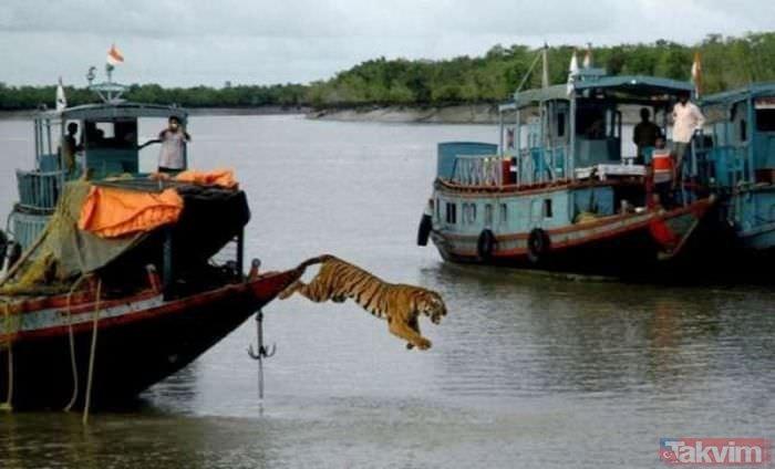Hindistan'dan birbirinden ilginç fotoğraflar...